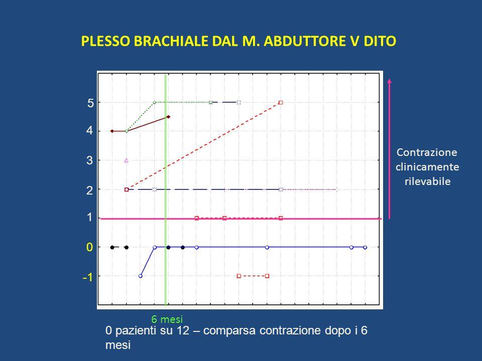 PLESSO BRACHIALE DAL M. ABDUTTORE V DITO
