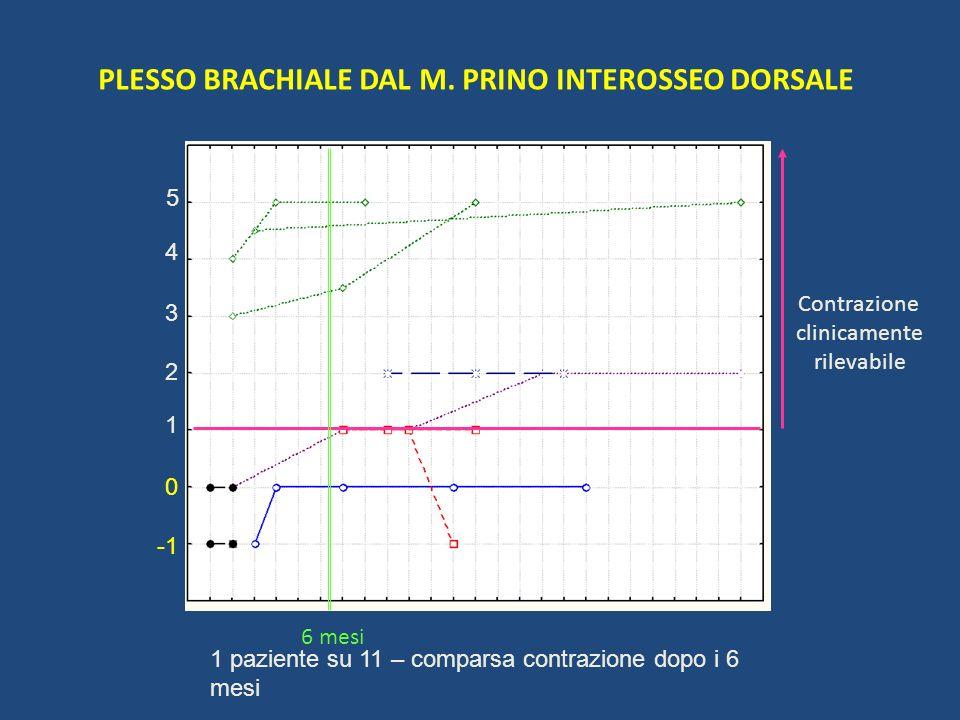 PLESSO BRACHIALE DAL M. PRINO INTEROSSEO DORSALE