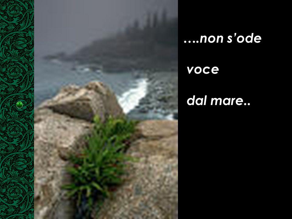 ….non s'ode voce dal mare..