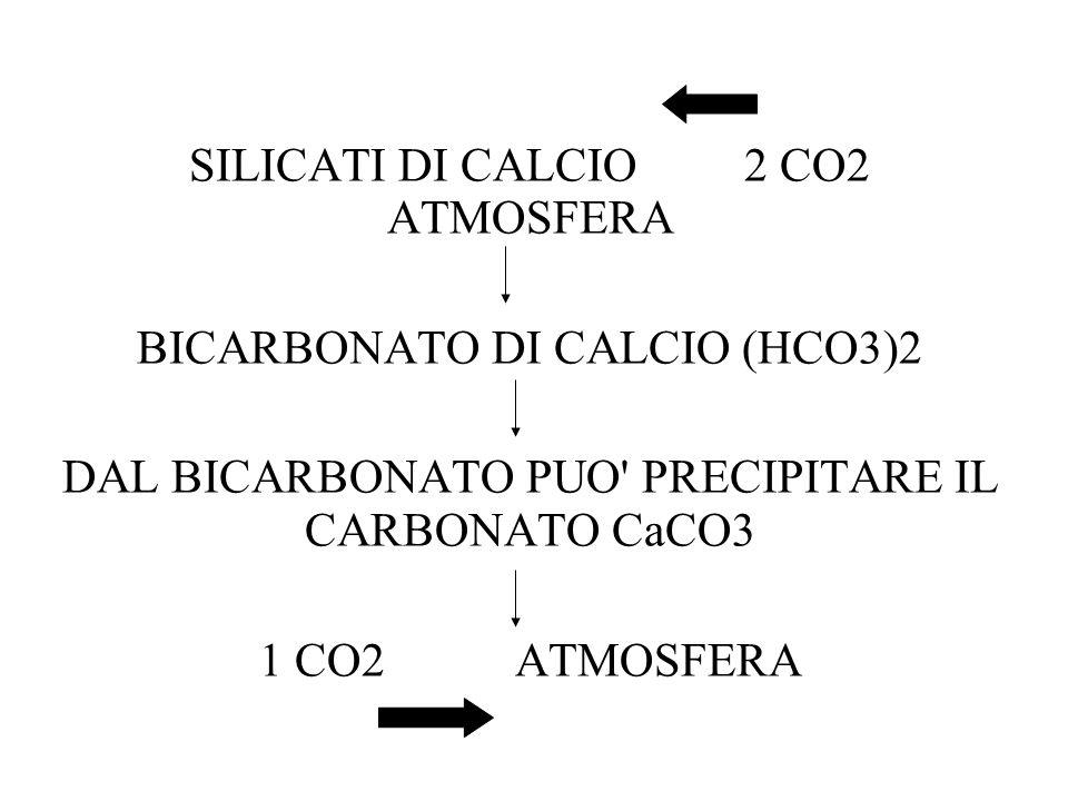 SILICATI DI CALCIO 2 CO2 ATMOSFERA