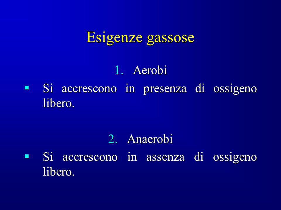 Esigenze gassose Aerobi Si accrescono in presenza di ossigeno libero.