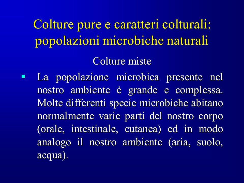 Colture pure e caratteri colturali: popolazioni microbiche naturali