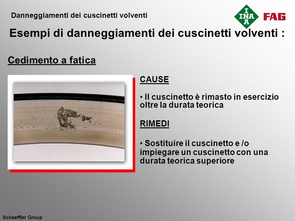 Esempi di danneggiamenti dei cuscinetti volventi :