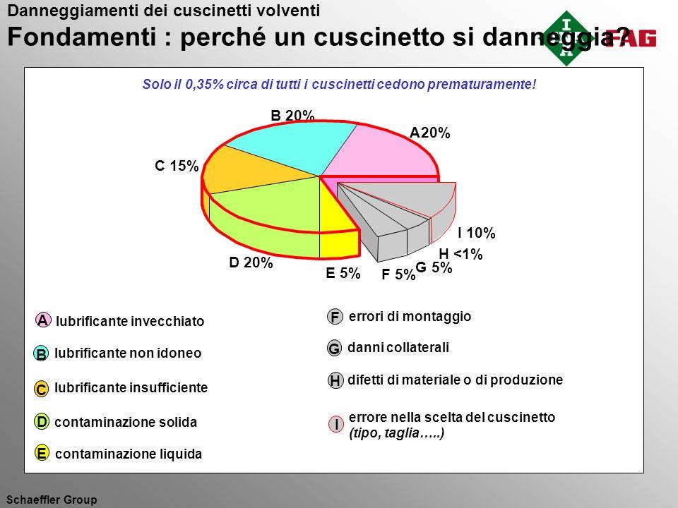 Solo il 0,35% circa di tutti i cuscinetti cedono prematuramente!