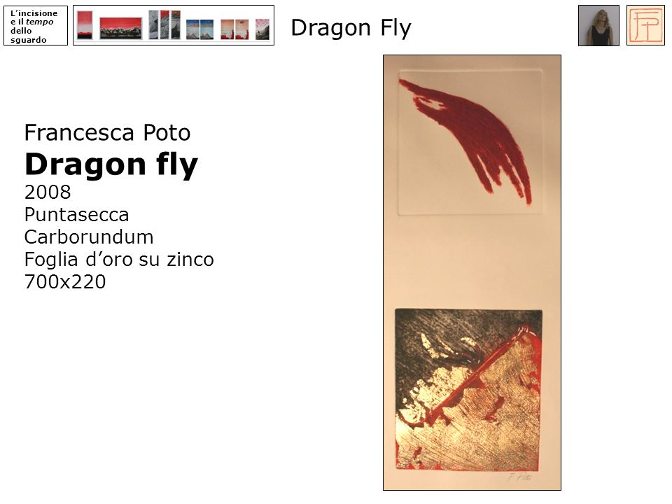 Dragon fly Dragon Fly Francesca Poto 2008 Puntasecca Carborundum