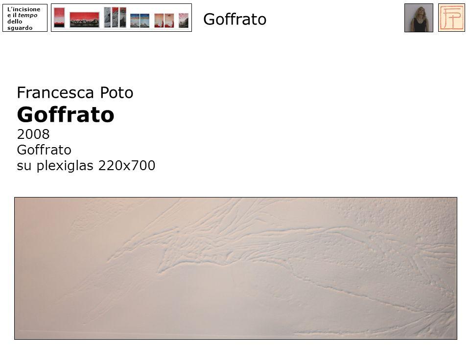 Goffrato Goffrato Francesca Poto 2008 su plexiglas 220x700 ‹N› 30 ‹N›