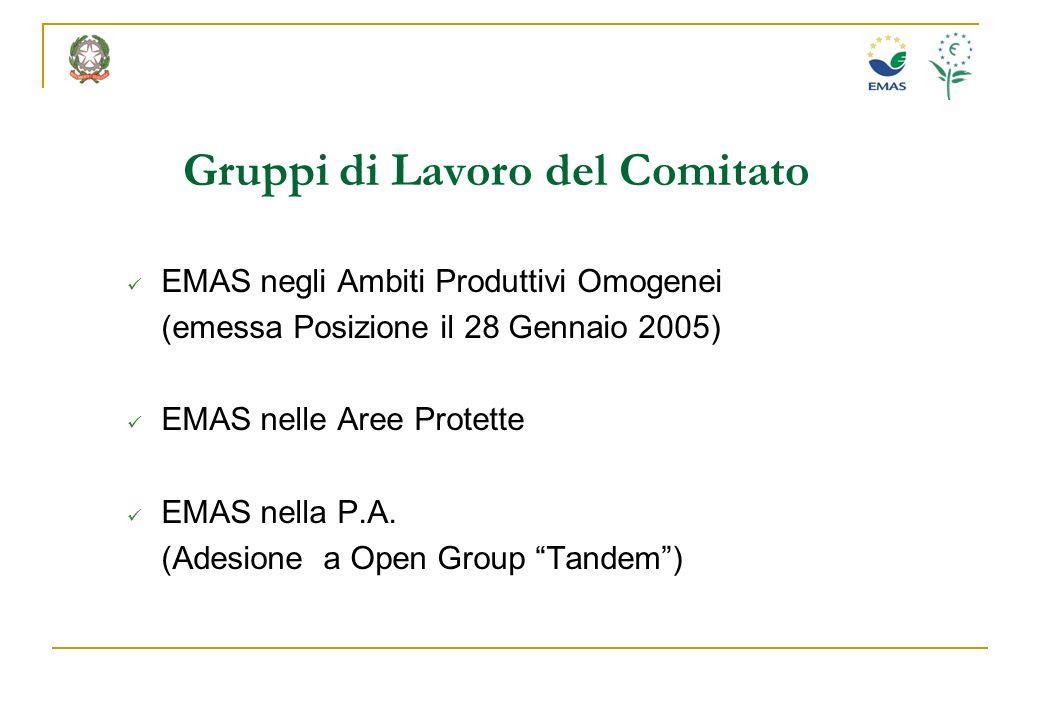 Gruppi di Lavoro del Comitato