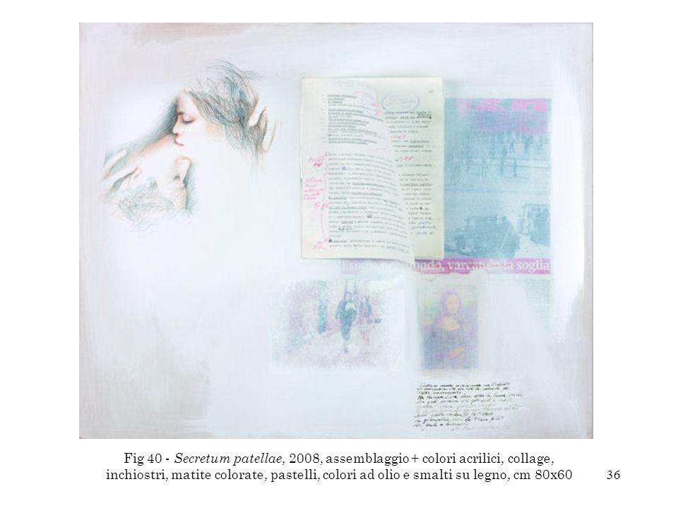 Fig 40 - Secretum patellae, 2008, assemblaggio + colori acrilici, collage, inchiostri, matite colorate, pastelli, colori ad olio e smalti su legno, cm 80x60