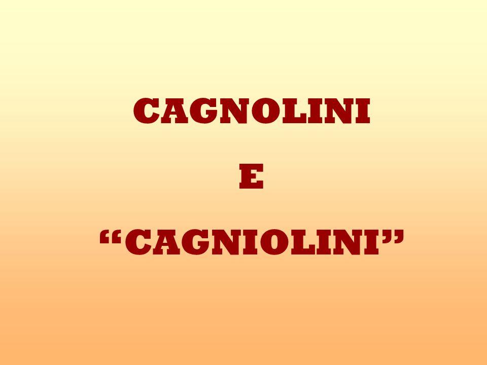 CAGNOLINI E CAGNIOLINI