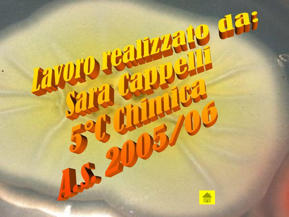 Lavoro realizzato da: Sara Cappelli 5°C Chimica A.s. 2005/06
