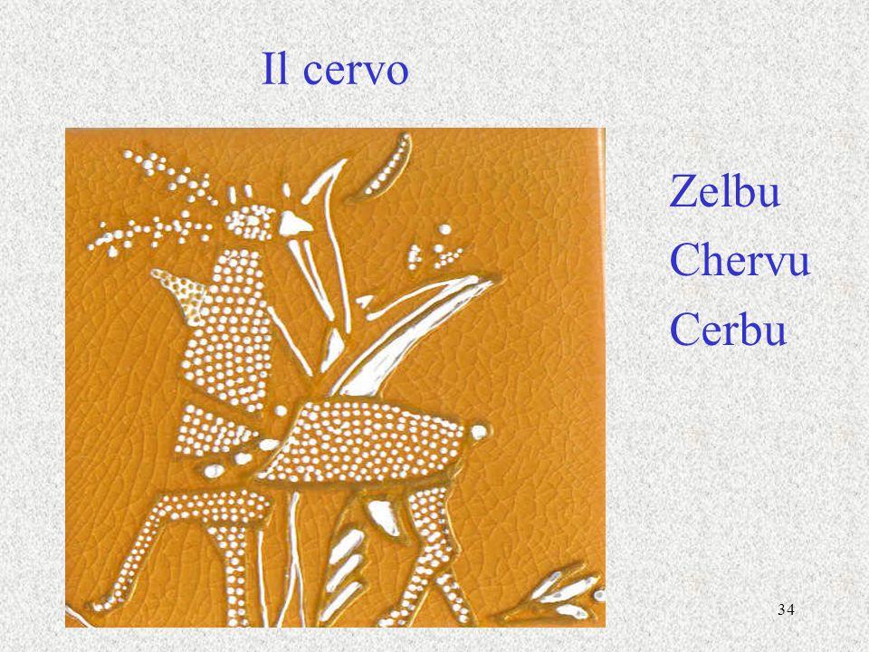 Il cervo Zelbu Chervu Cerbu