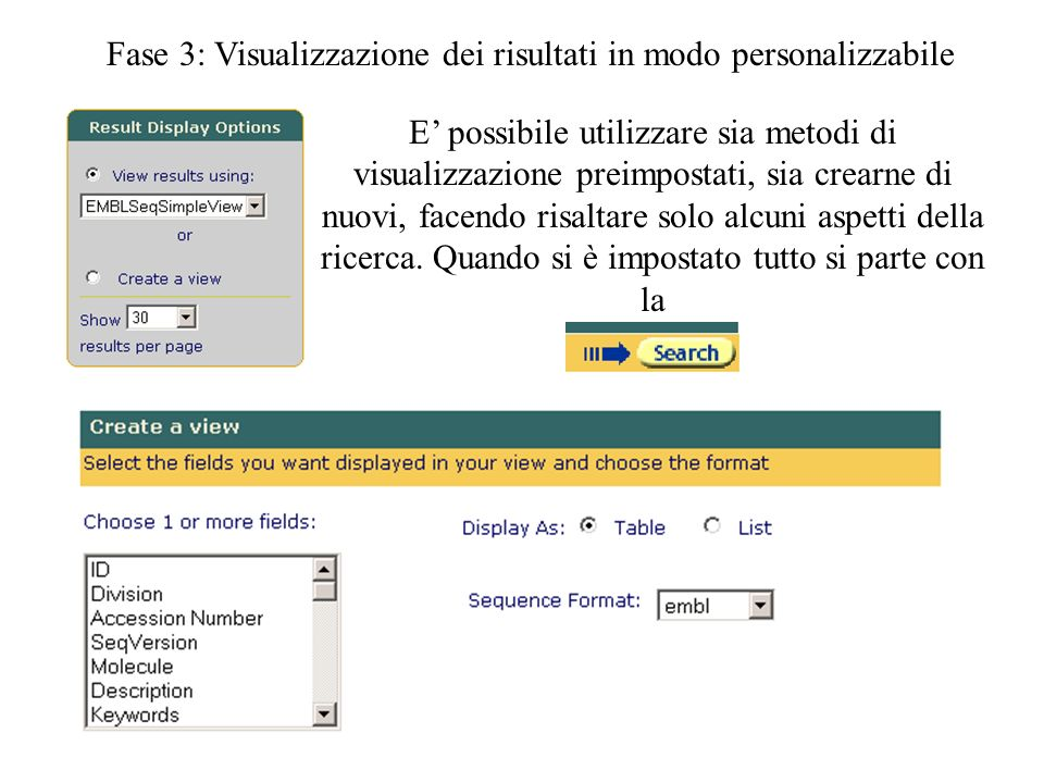 Fase 3: Visualizzazione dei risultati in modo personalizzabile