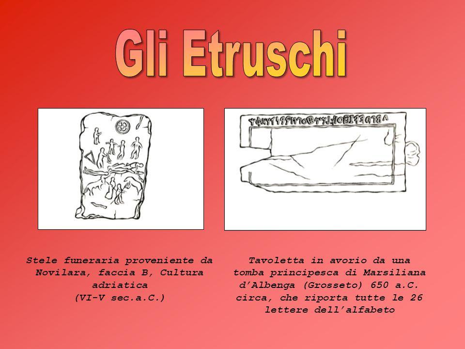 Stele funeraria proveniente da Novilara, faccia B, Cultura adriatica