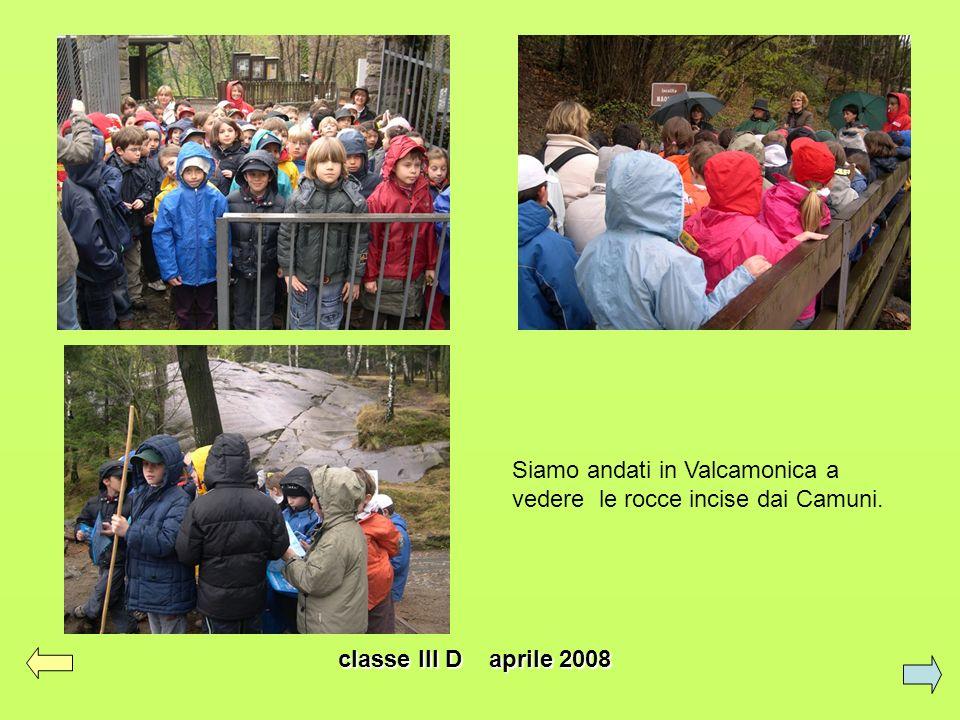 Siamo andati in Valcamonica a vedere le rocce incise dai Camuni.