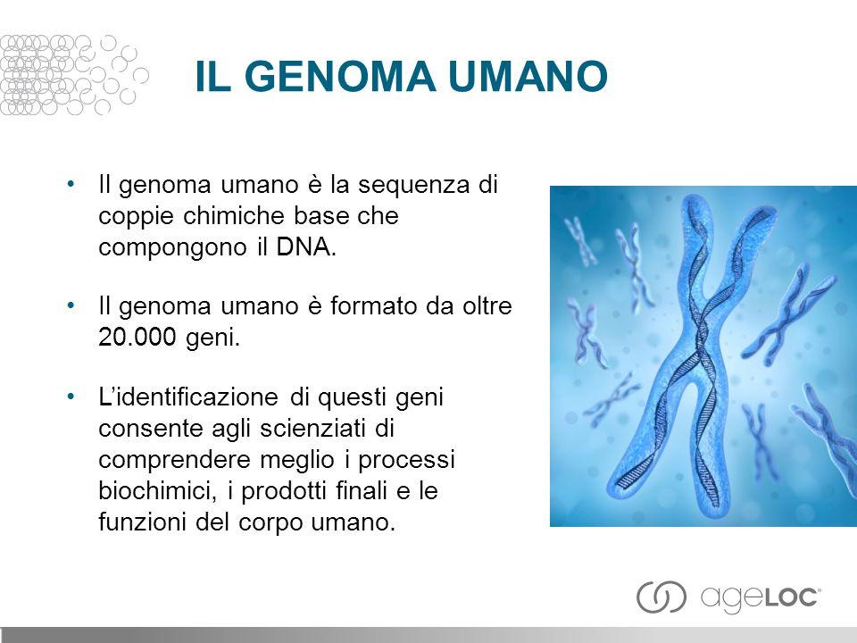 IL GENOMA UMANO Il genoma umano è la sequenza di coppie chimiche base che compongono il DNA. Il genoma umano è formato da oltre 20.000 geni.