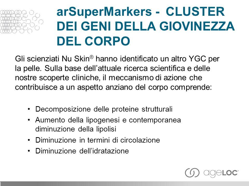 arSuperMarkers - CLUSTER DEI GENI DELLA GIOVINEZZA DEL CORPO