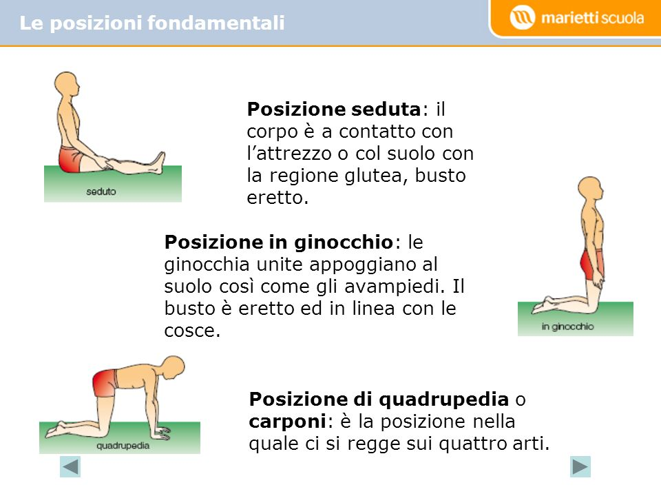 Le posizioni fondamentali