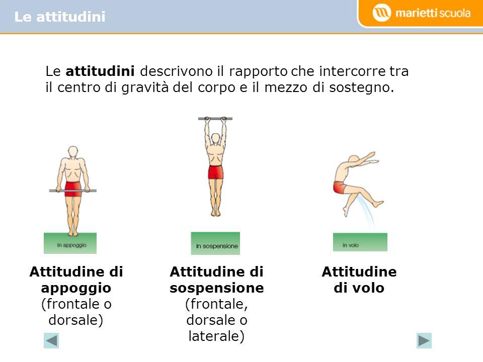 Attitudine di appoggio (frontale o dorsale) Attitudine di sospensione