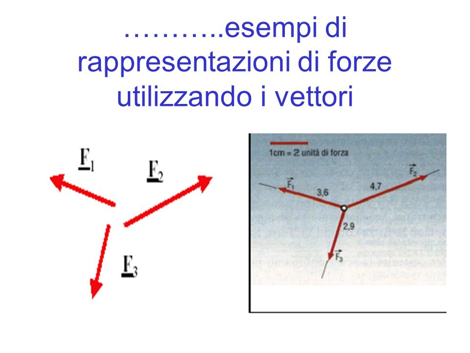 ………..esempi di rappresentazioni di forze utilizzando i vettori