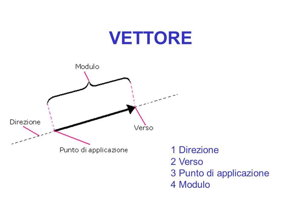 VETTORE 1 Direzione 2 Verso 3 Punto di applicazione 4 Modulo