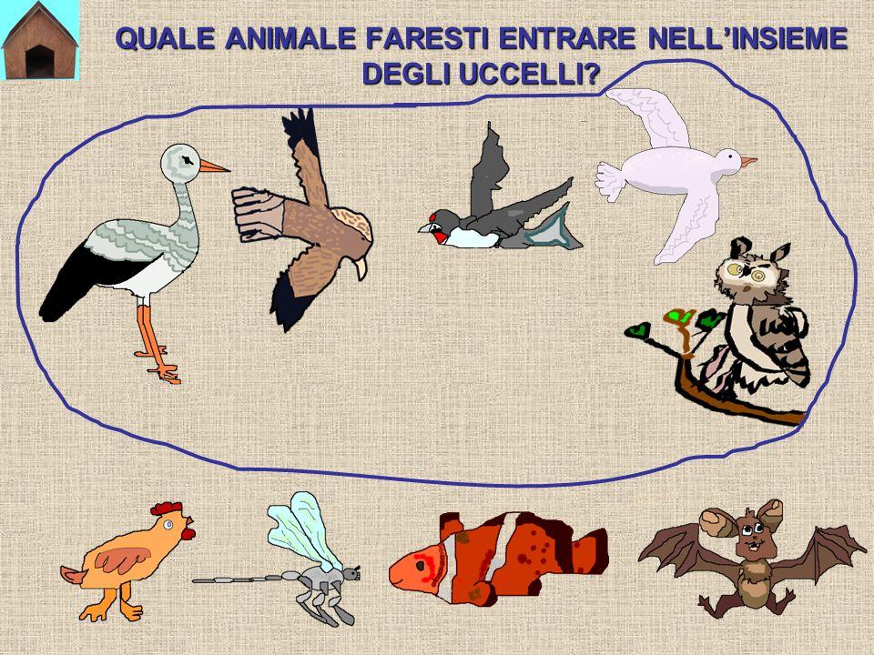 QUALE ANIMALE FARESTI ENTRARE NELL'INSIEME DEGLI UCCELLI