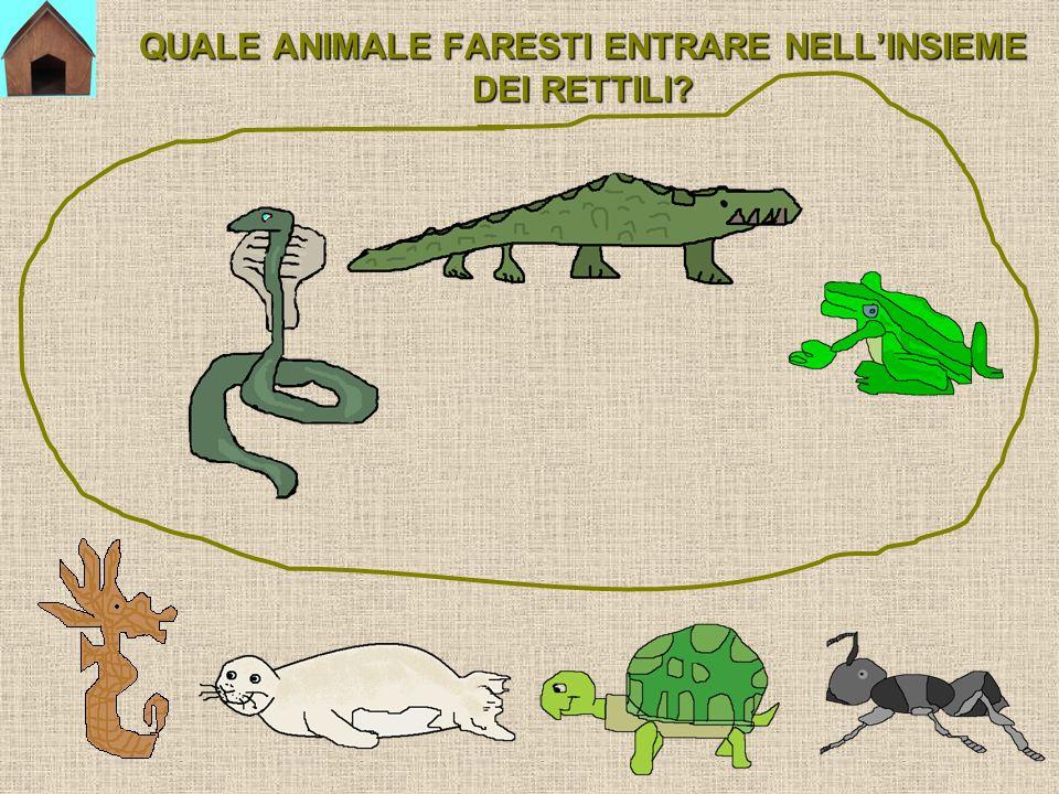 QUALE ANIMALE FARESTI ENTRARE NELL'INSIEME DEI RETTILI