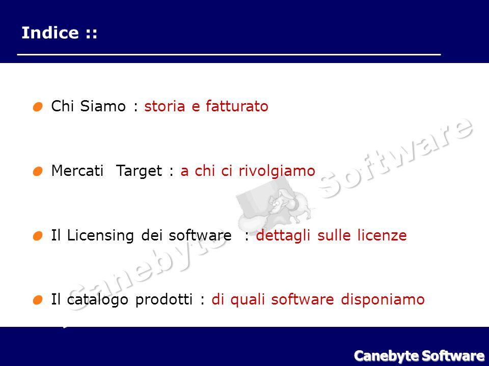 Canebyte Software Indice :: Chi Siamo : storia e fatturato