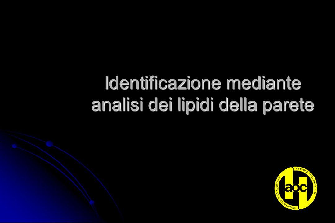 Identificazione mediante analisi dei lipidi della parete