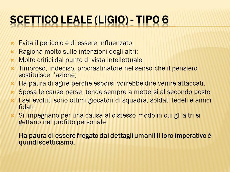 Scettico leale (Ligio) - tipo 6