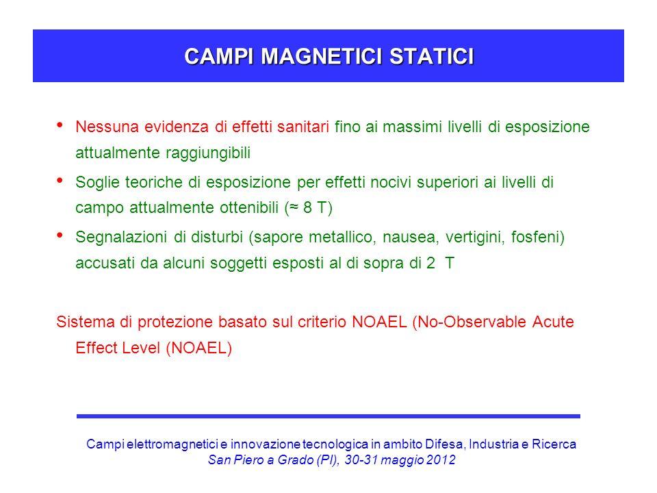 CAMPI MAGNETICI STATICI