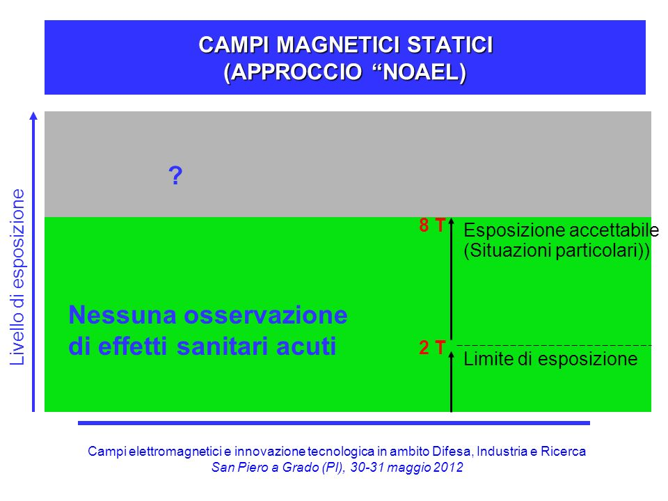 CAMPI MAGNETICI STATICI (APPROCCIO NOAEL)