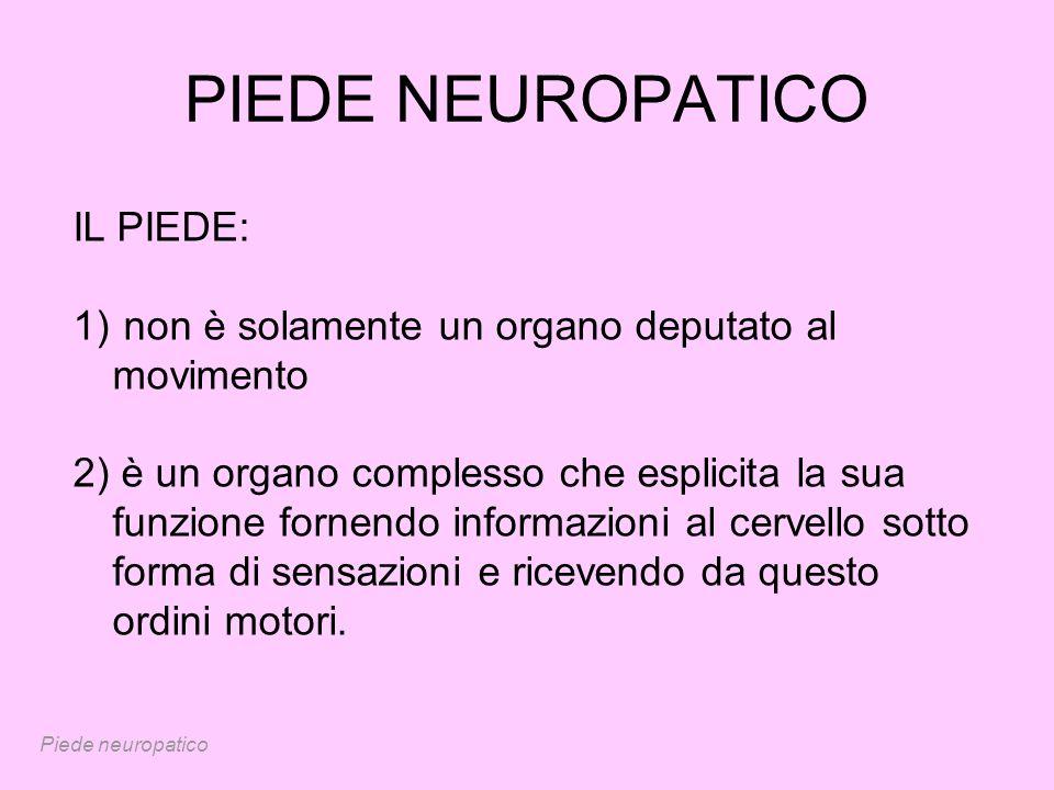 PIEDE NEUROPATICO IL PIEDE: