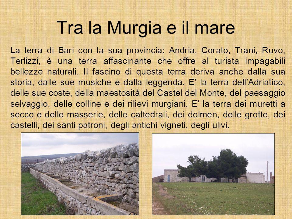 Tra la Murgia e il mare