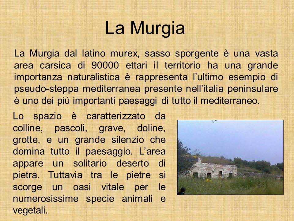 La Murgia