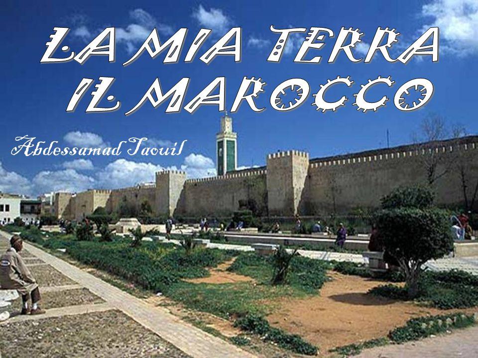 LA MIA TERRA IL MAROCCO Abdessamad Taouil