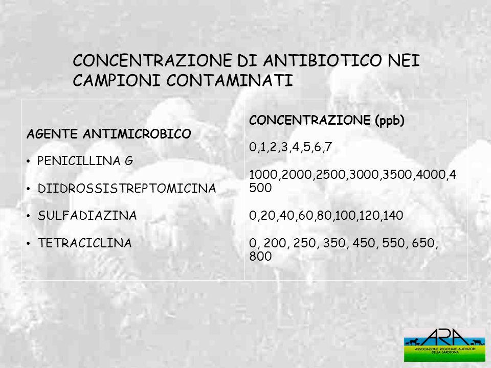 CONCENTRAZIONE DI ANTIBIOTICO NEI CAMPIONI CONTAMINATI