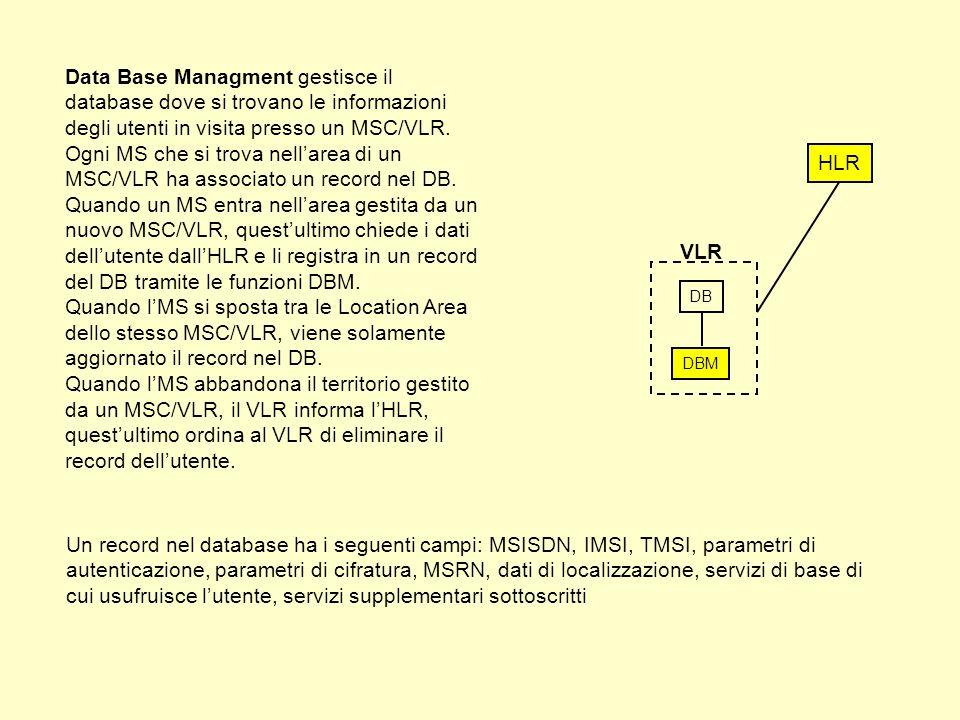 Data Base Managment gestisce il database dove si trovano le informazioni degli utenti in visita presso un MSC/VLR.