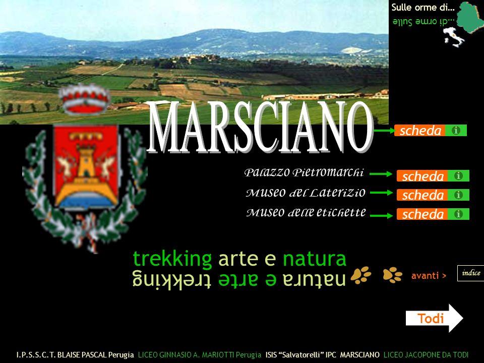 trekking arte e natura natura e arte trekking MARSCIANO scheda