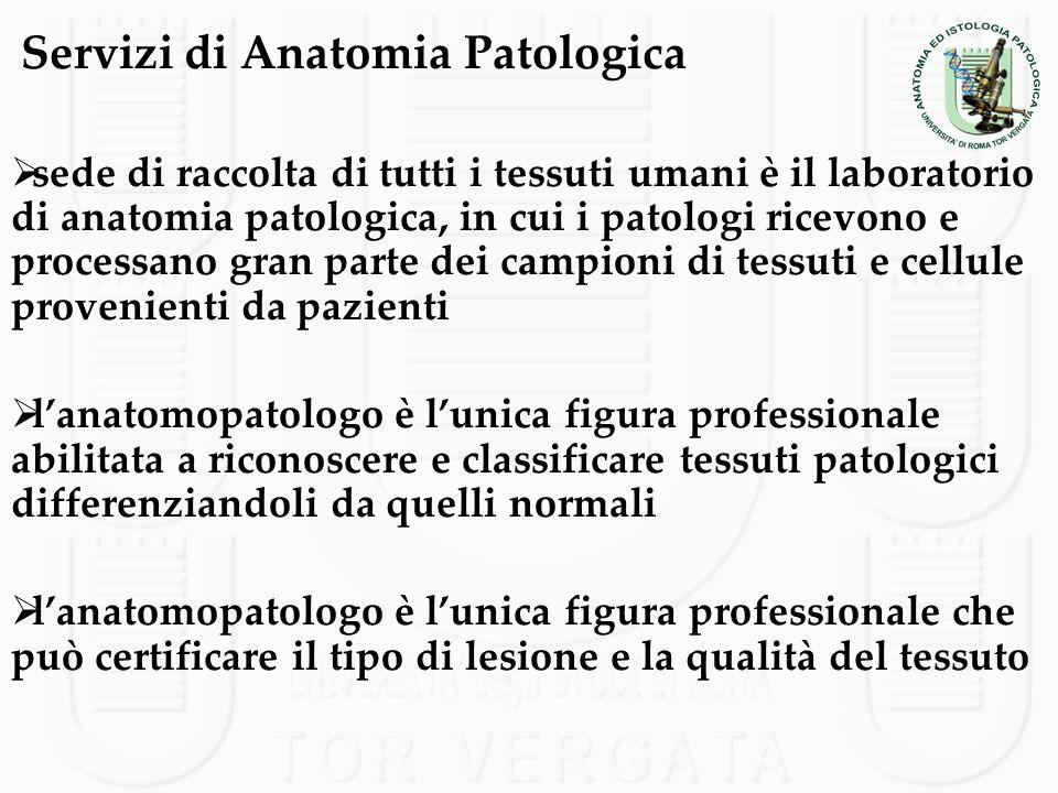 Servizi di Anatomia Patologica