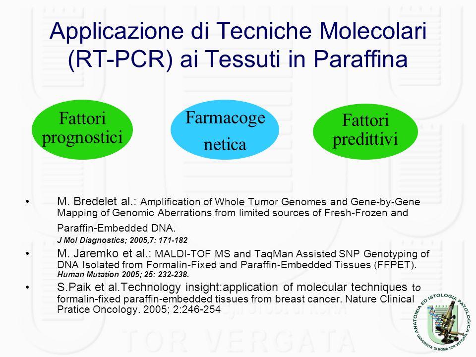 Applicazione di Tecniche Molecolari (RT-PCR) ai Tessuti in Paraffina