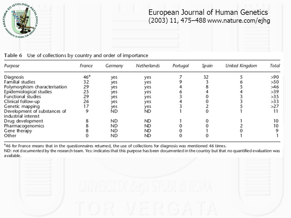European Journal of Human Genetics (2003) 11, 475–488 www. nature