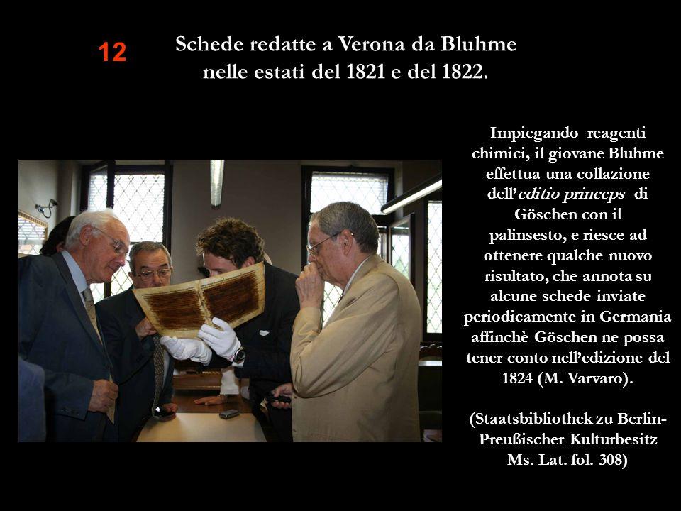 Schede redatte a Verona da Bluhme nelle estati del 1821 e del 1822.
