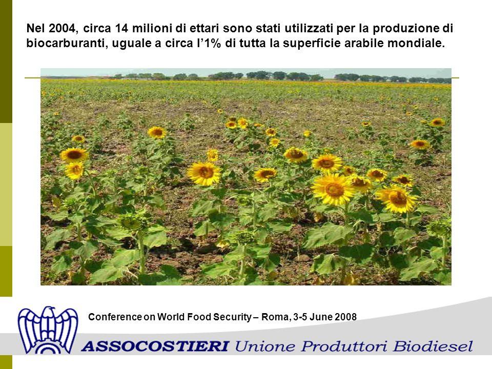 Nel 2004, circa 14 milioni di ettari sono stati utilizzati per la produzione di