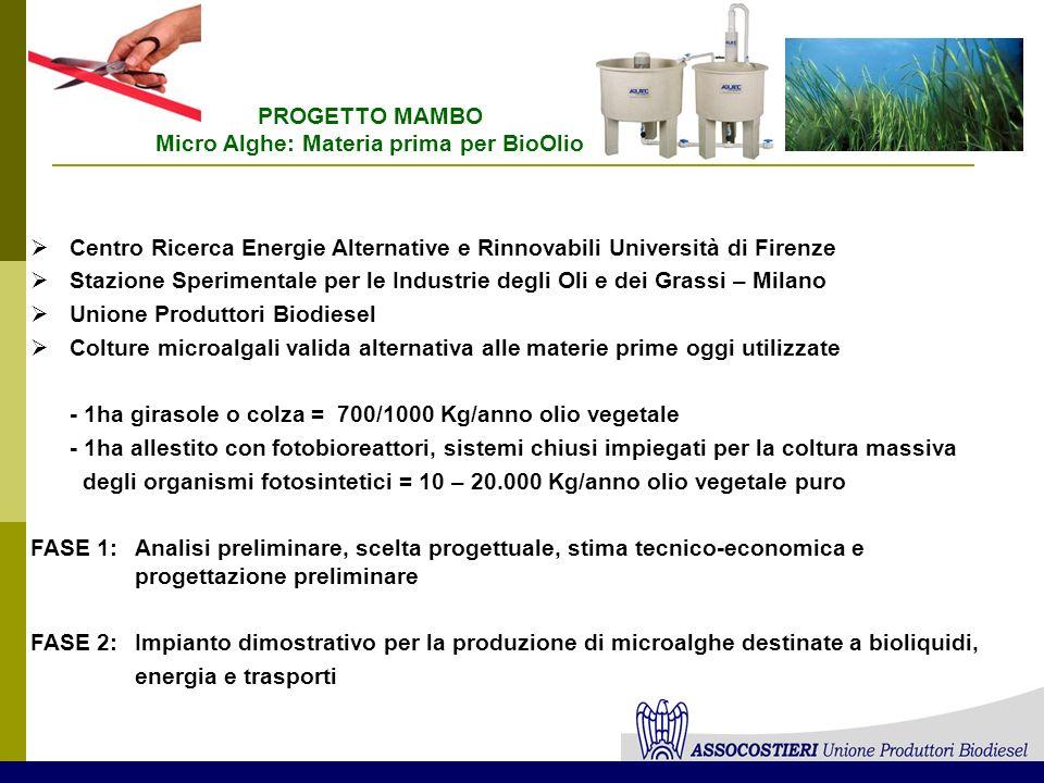 Micro Alghe: Materia prima per BioOlio