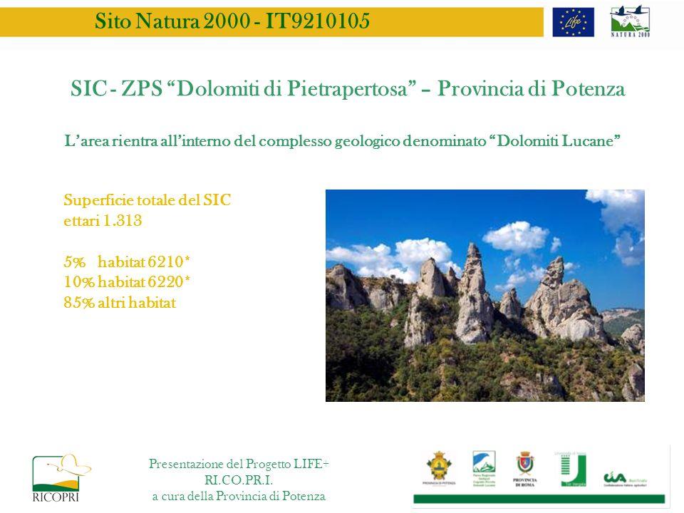 SIC - ZPS Dolomiti di Pietrapertosa – Provincia di Potenza