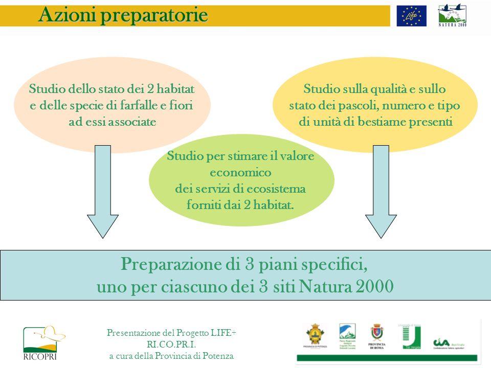 Azioni preparatorie Preparazione di 3 piani specifici,