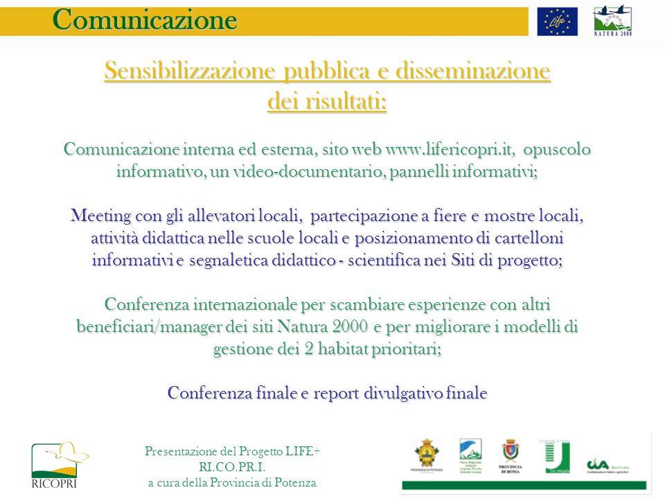 Comunicazione Sensibilizzazione pubblica e disseminazione dei risultati: