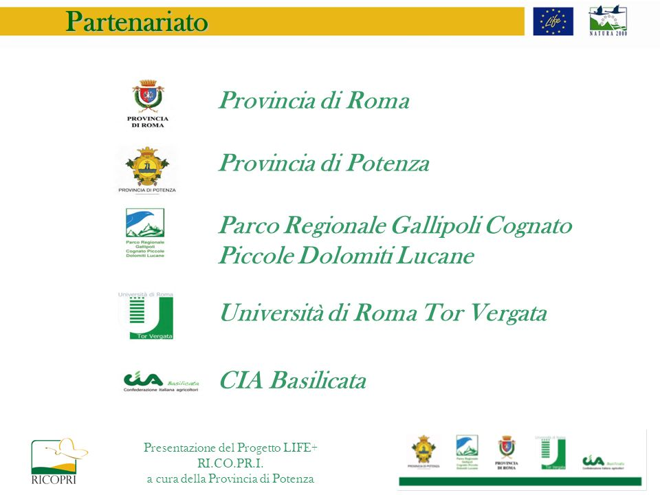Partenariato Provincia di Roma Provincia di Potenza