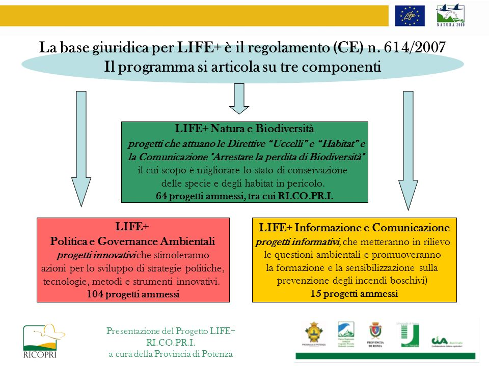La base giuridica per LIFE+ è il regolamento (CE) n. 614/2007