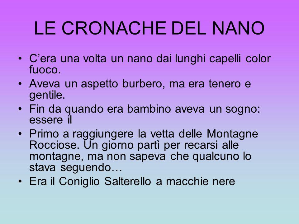 LE CRONACHE DEL NANO C'era una volta un nano dai lunghi capelli color fuoco. Aveva un aspetto burbero, ma era tenero e gentile.
